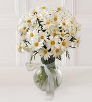 The FTD® Daisy Vase