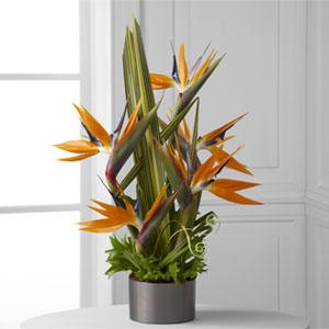 The FTD® Tropical Bright™ Arrangement