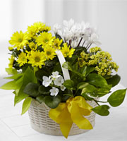 The FTD� A Bit of Sunshine� Basket