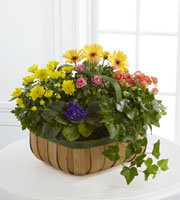 The FTD® Gentle Blossoms™ Basket by Lisa Dees raleigh flower delivery