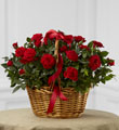 The FTD� Mini Rose