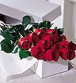 Una docena de rosas en una caja de FTD®