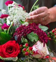 Bouquet festivo diseñado por el florista de FTD® - Grande