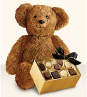 Bear with Chocolates by Lisa Dees flower delivery raleigh nc