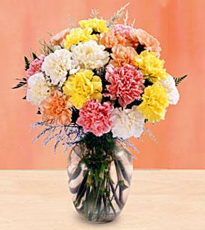 Carnation Bouquet with Vase