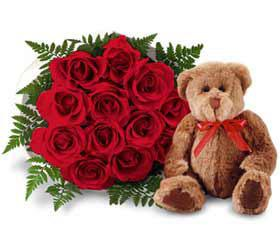 1 Dozen Red Roses with Bear and Vase