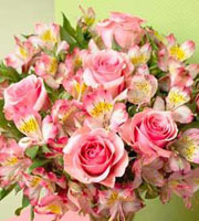Dreamland Pink  Bouquet - Wrapped