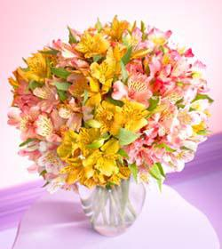 Mixed Peruvian Lilies Bouquet with Vase