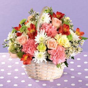 Basket of Caring Kindness