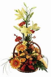 Fruit and Flower Basket
