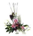 Arrangement in high style