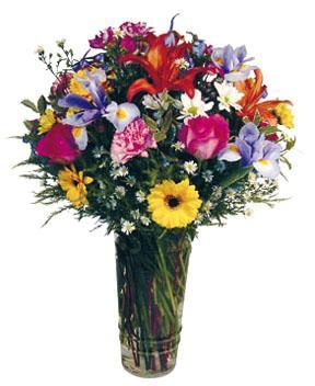 Arrangement de fleurs coupées dans un vase en verre