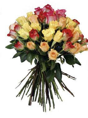 Bouquet of Multicolor Roses