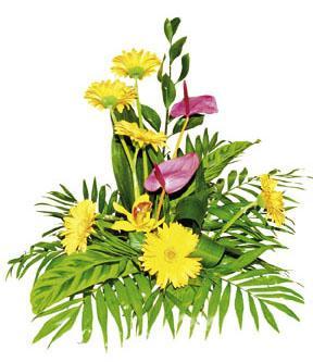 Arrangement de fleurs coupées