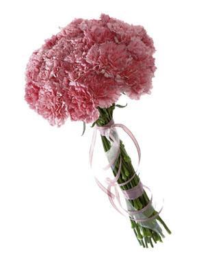 Bouquet d\'œillets