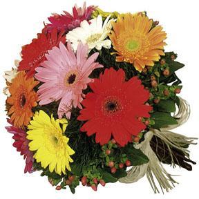 The FTD® Gerbera Bouquet