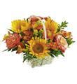 Le panier Bonheur floral FTD®