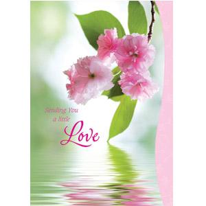 Sending You a Little Love