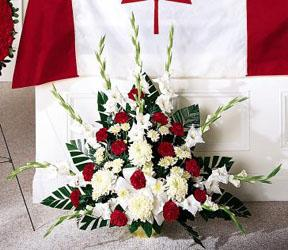 Send patriotic funeral sprays to Grand Rapids, Grandville, Hudsonville, Jenison, Byron Center and nationwide with Sunnyslope Floral, your delivery florist