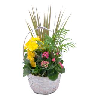 Bloomin\' Sunshine Days Basket