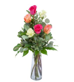 Six Roses