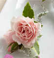 The FTD� Pink Spray Rose Boutonniere