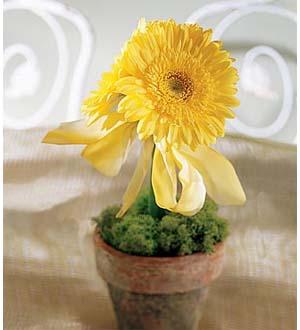 The FTD® Yellow Gerbera Centerpiece