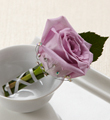 The FTD� New Love� Boutonniere