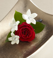 The FTD� Poetry� Boutonniere