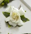 The FTD� Gardenia Boutonniere