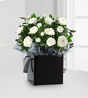 Kind Condolences Mini Rose Plant