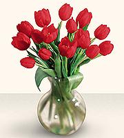 Red Tulip Bouquet