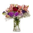 Lily Sensation by Community Florist