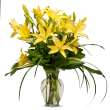 Lily by Community Florist