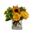 Sunny Limeade by Community Florist