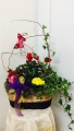 Secrect Garden Planter Basket
