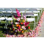 Daisy Delight Ceremony