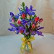 Iris and Tulips