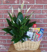 Dad's Plant and Snack Basket