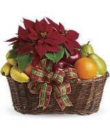 Fruit & Pointsettia Basket