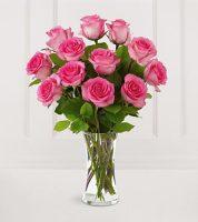 Malibu Roses