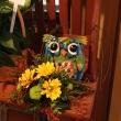 Blue Owl Fall Arrangement