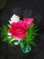 Mixed Pink Spray Rose Boutonniere