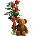 Teddy Bear & Roses Vase