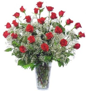 Two Dozen Red Roses & Babies Breath