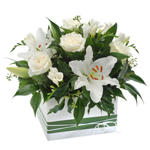 Sign of the rose harmony colorado springs co 80918 ftd florist elegant box arrangement in white delivery information mightylinksfo