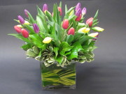 The Tulip Bouquet