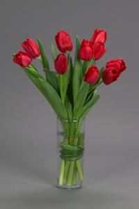 Single Vase Red Tulips