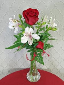 Alstro Rose