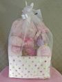 Deluxe Baby Girl Bundle